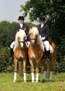 haflingerstaldeflammert.nl-website-20090209-222747-562503