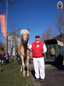 haflingerstaldeflammert.nl-website-20070204-000712-20110319-203955-891682